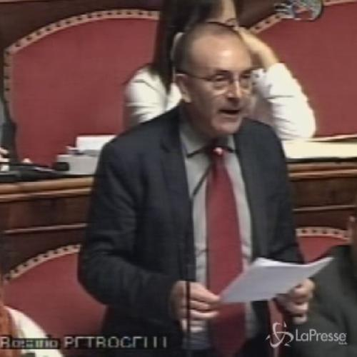 Riforme, il Grillino Petrocelli: Regola canguro illegittima, annullare emendamenti â??canguratiâ?