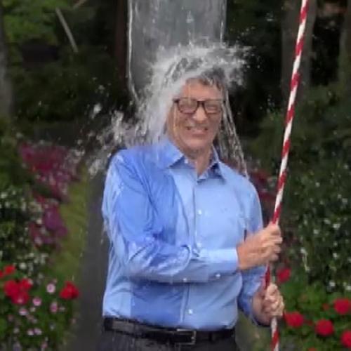 Ice bucket challenge: raccolti 40 milioni contro la Sla, ...