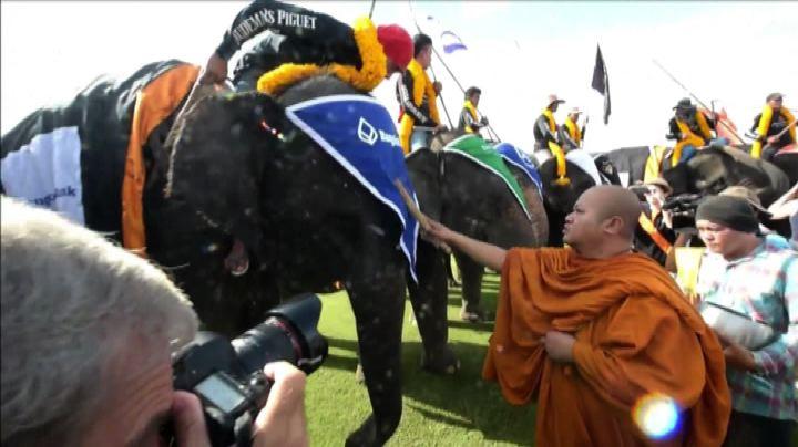 Il torneo di polo con gli elefanti in Thailandia