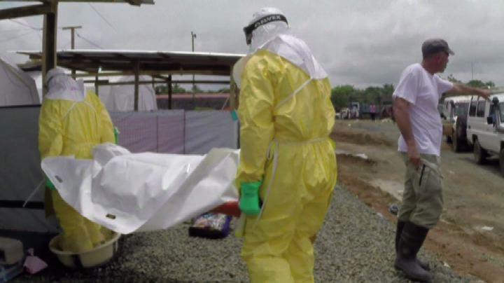 Ebola, Organizzazione mondiale della Sanità: i morti sono ...