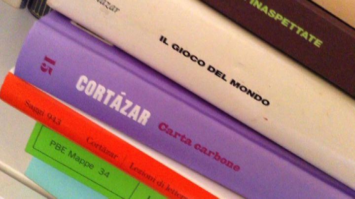Un secolo di Julio Cortazar: padre del Sudamerica ...
