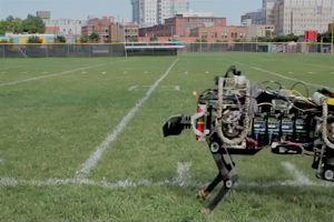 Arriva il robot ghepardo: sa correre e raggiunge  i 50 ...