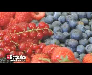 Piccoli gustosi frutti