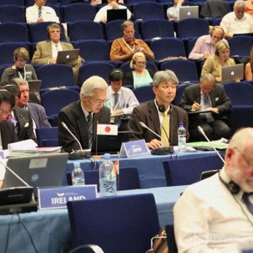 Slovenia, Commissione Baleniera vota contro proseguimento ...
