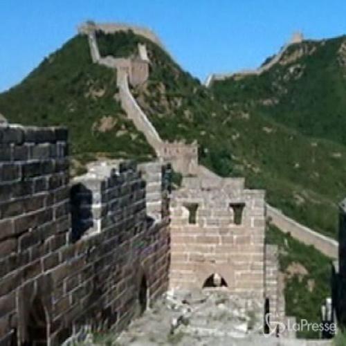Cina, avviato progetto per monitorare conservazione Grande ...