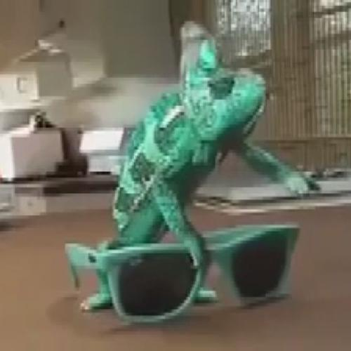 Camaleonte, realtà o effetto speciale