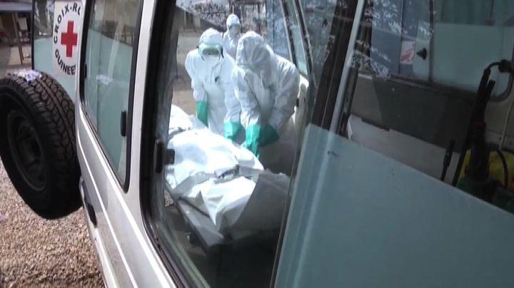 Oms: 20mila casi Ebola entro inizio novembre, servono ...