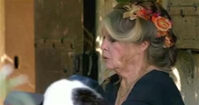 Brigitte, l'icona compie 80 anni e in Francia la odiano     ...