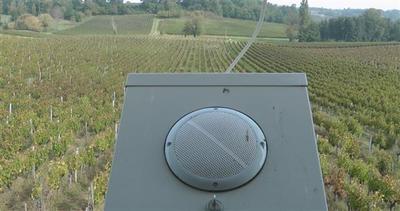 Francia, musico-terapia contro i pesticidi chimici