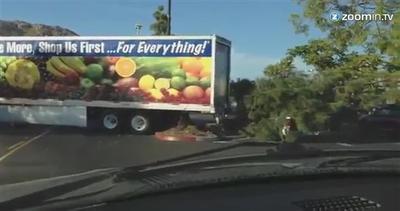 Manovra sbagliata, camion distrugge un albero