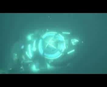 Calamaro attacca il sommergibile di Greenpeace