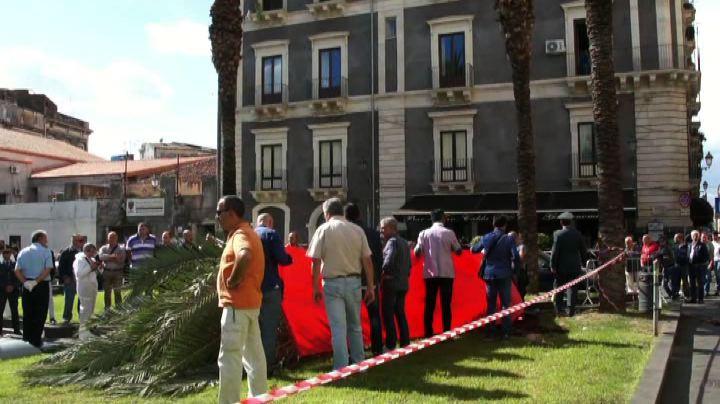 Catania, donna muore travolta da una palma