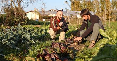 Non ci resta che l'orto, tutorial online per agricoltori ...