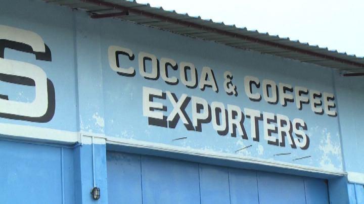L'amarissimo cacao della Sierra Leone alle prese con ...