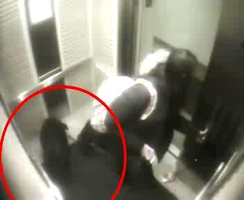 Il guinzaglio resta impigliato nell'ascensore, terrore a ...