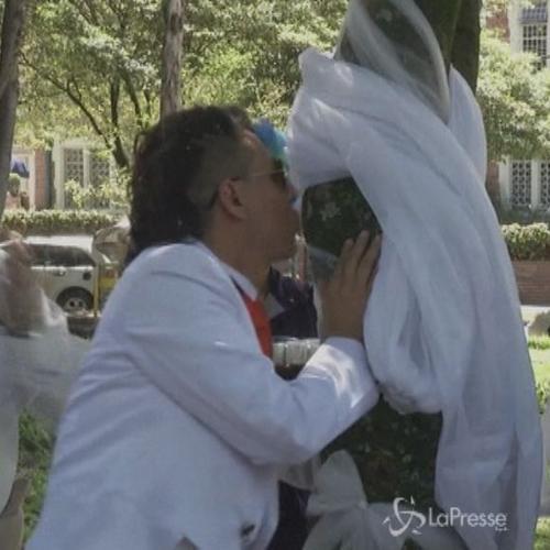 Attivista sposa un albero per sensibilizzare sui problemi ...