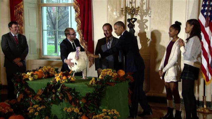 "Usa, Obama salva i tacchini Mac e Cheese ""violando la ..."