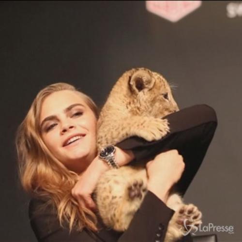 Cara Delevigne posa con un leone a Parigi: la modella ...