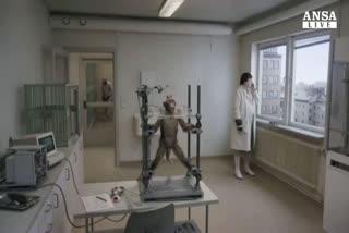 Cinema: l'umanita' folle vista dal Piccione di Anderson     ...