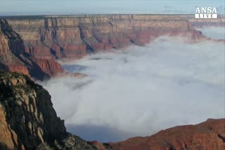 Usa, fitta nebbia sul Grand Canyon