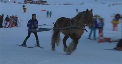 Lo skijoring: sciare con il cavallo