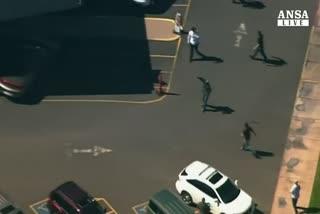 Lama 'impazziti' mandano in tilt traffico Arizona