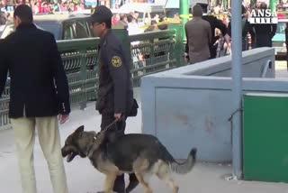Bomba al Cairo. Stampa locale, due morti