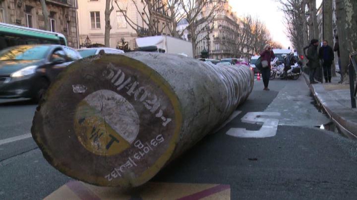 Legno illegale, Greenpeace in azione a Parigi