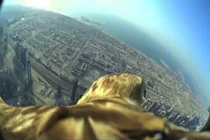 Sulle ali di un'aquila in volo sopra Dubai