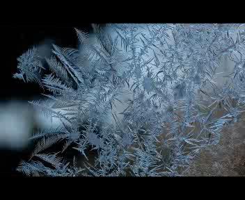 Lo spettacolo dei cristalli di ghiaccio
