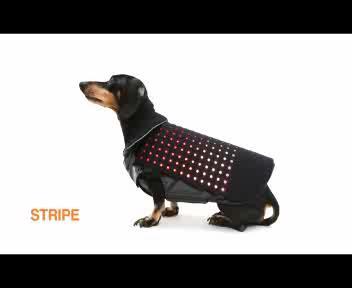 La mantellina hi tech per cani veramente 'cool'