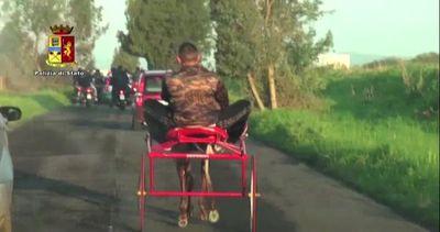 Catania, corsa clandestina di cavalli: denunciate 4 persone ...