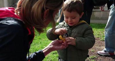 """Pasqua: arriva la """"Caccia alle Uova"""" per grandi e piccini   ..."""