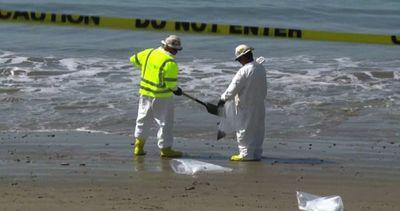 Petrolio in mare in California, al lavoro per ripulire le ...