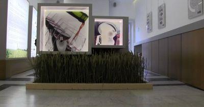 """Homi coniuga design e cibo: in Triennale """"Disegnato ..."""