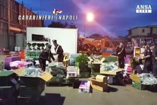 Droga: a bordo del Tir 55 chili di marijuana, due arresti   ...