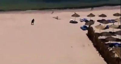 Tunisia, video amatoriale mostra attentatore su spiaggia ...