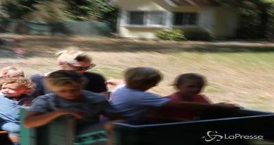 Gwen Stefani al parco con i figli: insieme in gita sul ...