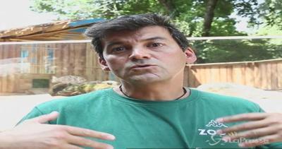 Le lontre Nina e Himal protagoniste a Zoom: il racconto del ...