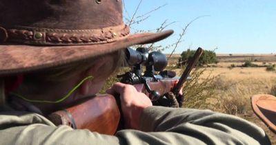 Buone e cattive ragioni alla base della caccia grossa in ...