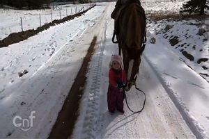 Una bambina cammina con un cavallo al suo fianco