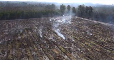 Francia, roghi in Gironda: oltre 600 vigili del fuoco ...
