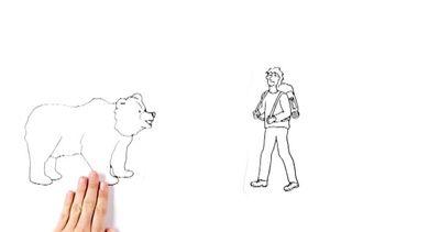 Come comportarsi sulle Alpi davanti a un orso, i consigli ...