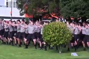 Danza Maori degli studenti al funerale del prof in Nuova ...