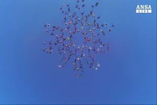 Lancio record, la danza in cielo dei paracadutisti