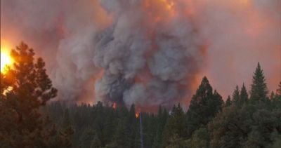 Usa, California: allarme incendi, in fumo 21.000 ettari