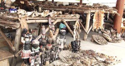 Ossa, pelli e piume: è il mercato del Voodoo in Togo