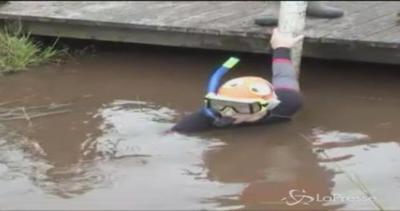 Nuotatori coraggiori sguazzano nella torbiera per ...