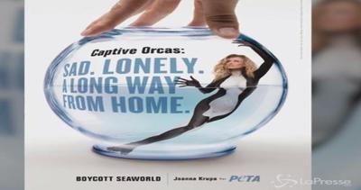Super modella Joanna Krupa si spoglia contro le orche in ...