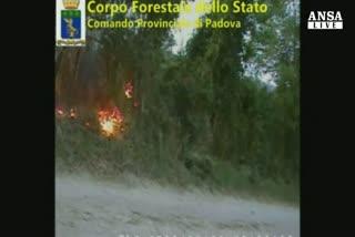 Incendi su Colli Euganei, arrestato presunto piromane